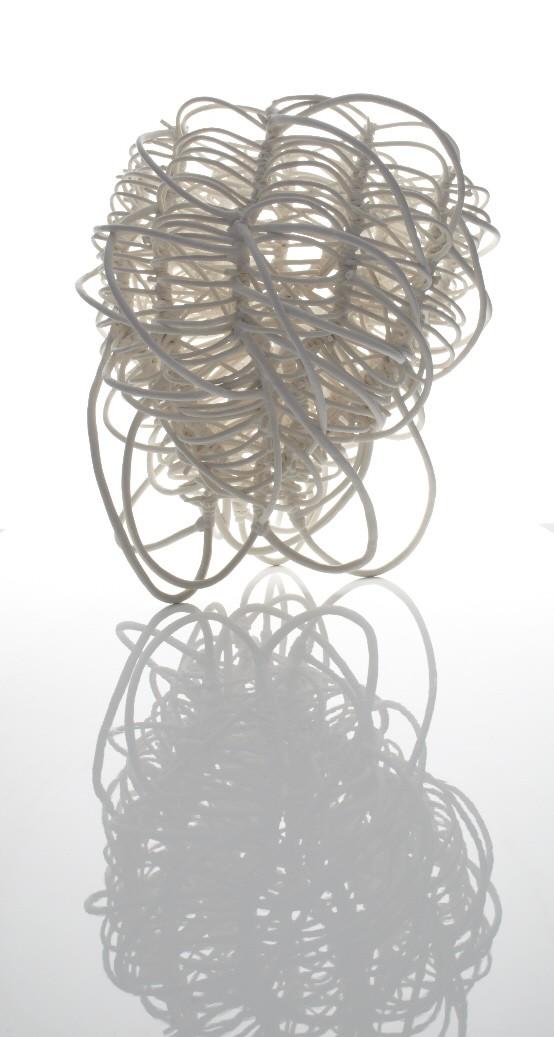 035. Banksia Dynamic