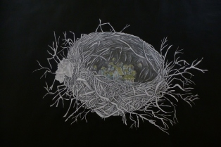 Within the Womb, graphite and acrylic on paper, 2014
